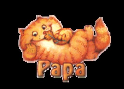 Papa - SpringKitty