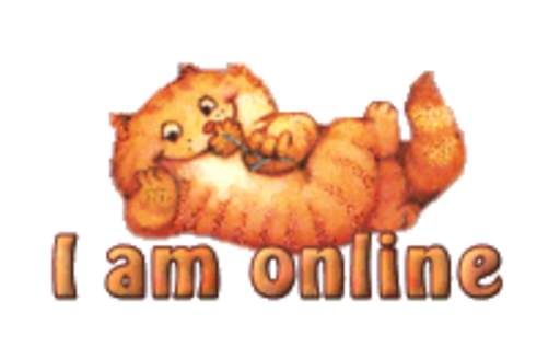 I am online - SpringKitty