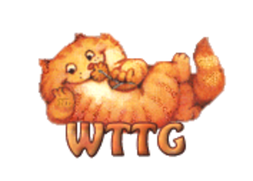 WTTG - SpringKitty
