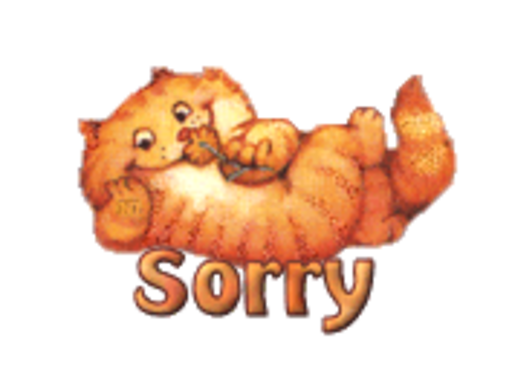 Sorry - SpringKitty