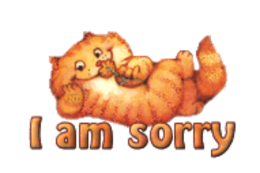 I am sorry - SpringKitty