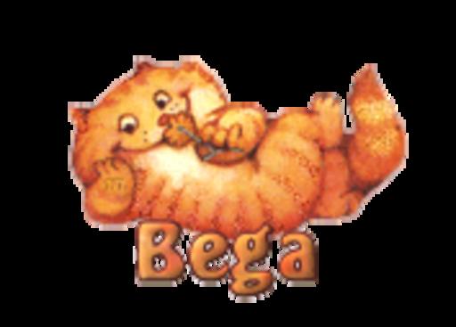 Bega - SpringKitty