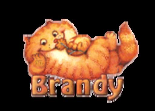 Brandy - SpringKitty