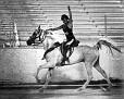 SUR SHERIF #136585 (Ansata El Sherif x Sura Nita, by Sureyn) 1976 grey stallion bred by Jedel Arabian Horse Ranch. Sired no registered purebreds.