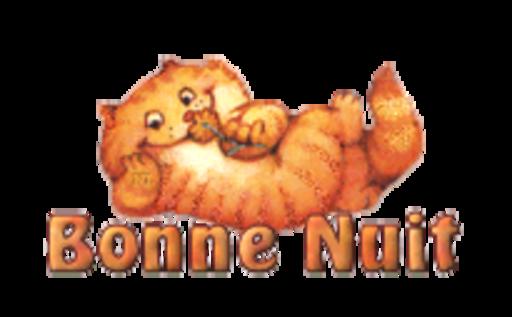 Bonne Nuit - SpringKitty