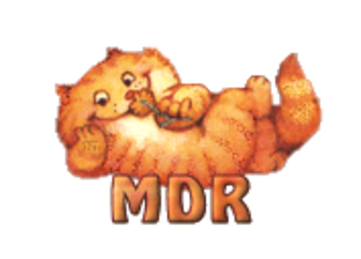 MDR - SpringKitty