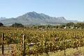 Stellenbosch 2014 April 12 (2)