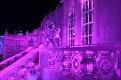 Brugge Frozen Ice Sculptures 2013 (1)