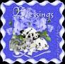 friendsamidroses-blessings