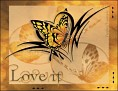 Loveit ButterflyTatoo VTMC-vi