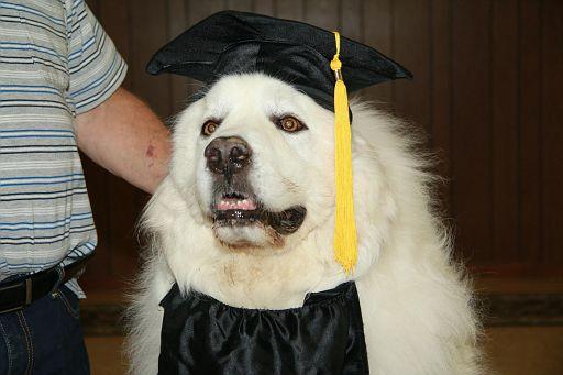 2017-06-22-Graduation 630 (92)