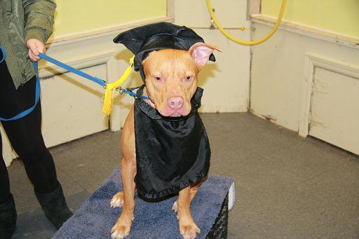 12-11-17-Graduation-M1 (11)
