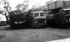 RGC241  1955 Bristol HG6L. New as 64F337. Also Leyland  no. 5E547