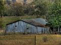 Mumbil Farm 002
