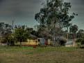 Mumbil Farm 009