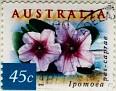 Australia 1999 Ipomea