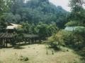 Borneo 045.JPG