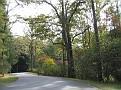 N Carolina - Biltmore Garden04