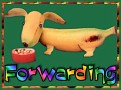 1Forwarding-bananadog