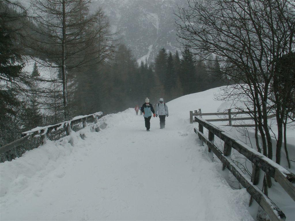 Steinach080116Obernbergersee010