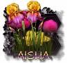 Aisha - 3094
