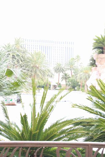 Las Vegas_016.JPG