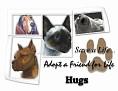 dcd-Hugs-Adopt a Friend.jpg