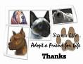 dcd-Thanks-Adopt a Friend.jpg