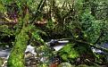 stream-1920x1200-005