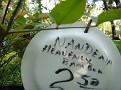 Plants Names DX7 217