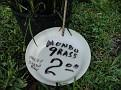 Plants Names DX7 227
