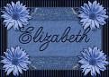 ElizabethBlueDaisy-vi