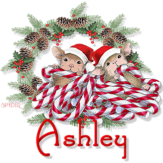 Ashley hm candycanechristmas