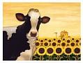 Sunflower-Cow-Print-C11737903
