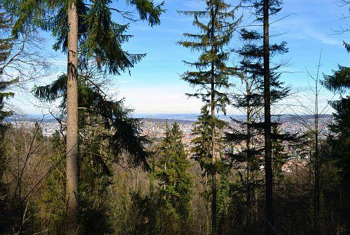 Uetliberg mountain