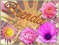 Brenda LWflowers