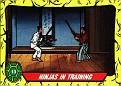 Teenage Mutant Ninja Turtles #013