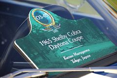 DSC 8878 - Copy