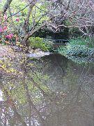 Descano Gardens10