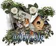 Adorable - 2939