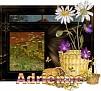 Adrienne - 3380