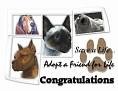 dcd-Congratulations-Adopt a Friend.jpg