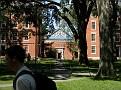 more of Harvard quad