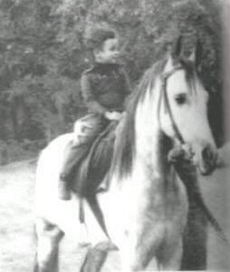 ASIL AL BADEIA  1972 grey stallion (El Badi x Atfa, by *Morafic)