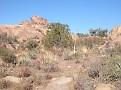 Vasquez Rocks Dec09 074
