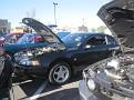 Vegas Mustangs 021