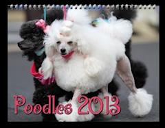 Poodles 2013 Calender zazzle_calendar