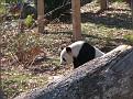 061125 Zoo 1032