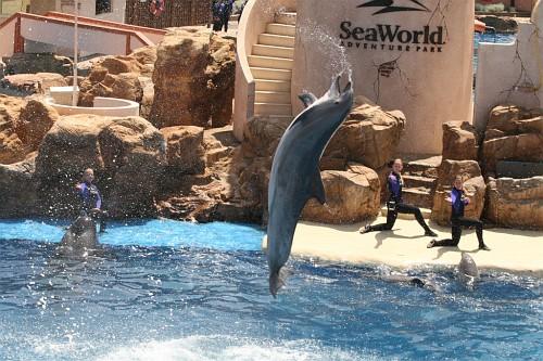 070417 SeaWorld 0157
