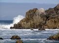 Monterey Trip Aug07 280.jpg